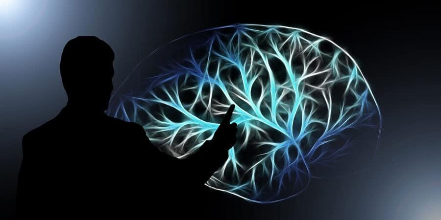 What are Brain Injuries